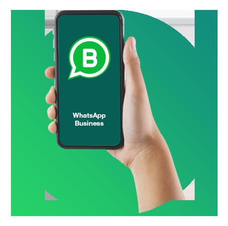 WhatsApps Business Virtual Landlines